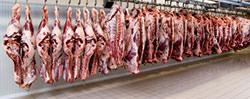 Fleisch und Fleischkonsum