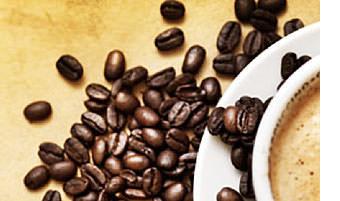 Lebensbaum-bio-kaffee-espresso