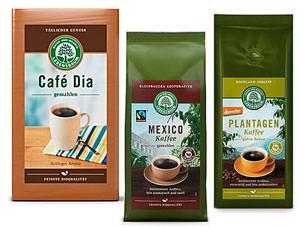 lebensbaum-bio-kaffee-mexico-plantagen-cafe-dia