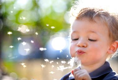 Fitne Nahrungsergaenzungen Pollenflug