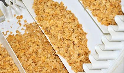 spielberger-bio-flakes