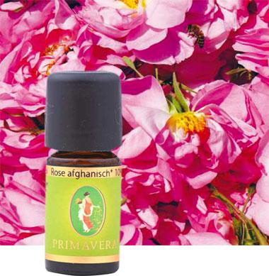 primavera-aetherisches-oel-bio-rose-afghanisch