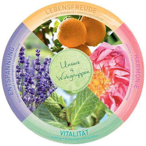 primavera-aromatherapie-wirkgruppen