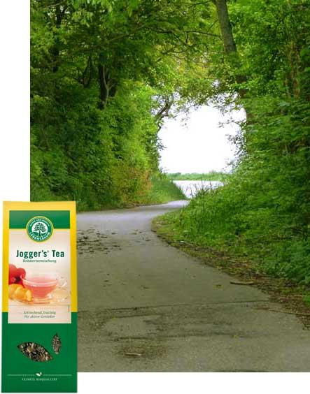 lebensbaum-bio-joggers-tea-kraeutertee