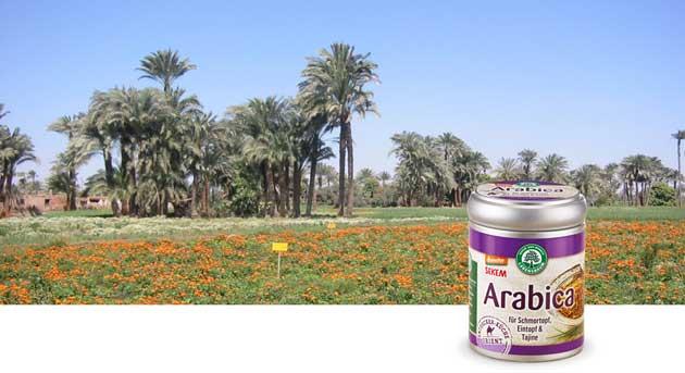 sekem-arabica-gewuerzmischung-demeter