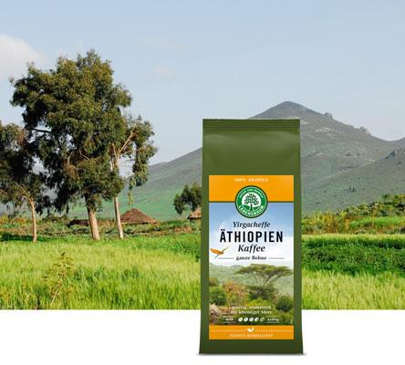 lebensbaum-bio-herkunftskaffee-aethiopien